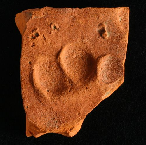 Tile with dog's pawprint from enclosure ditch in western part of the site