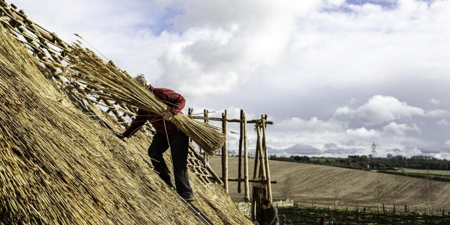 Building the Neolithic house at Butser Ancient Farm