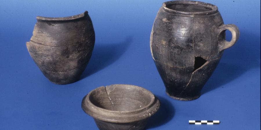 Roman-British Black Burnished Ware vessels from Wessex Court