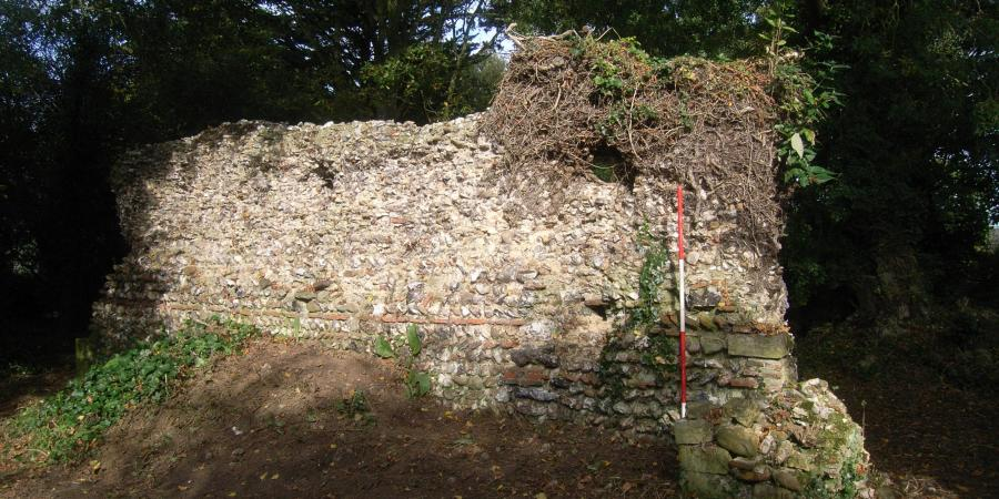 Upstanding wall at Blythburgh Priory
