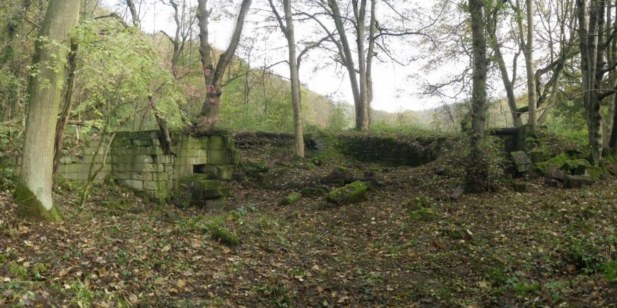 Archaeological remains in the woods at Wortley Tin Mill, Barnsley