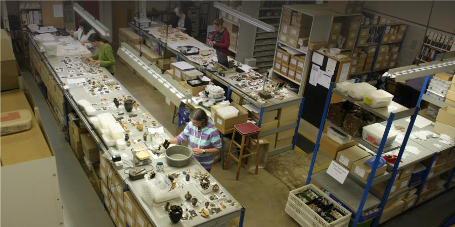 Specialists working in our finds department