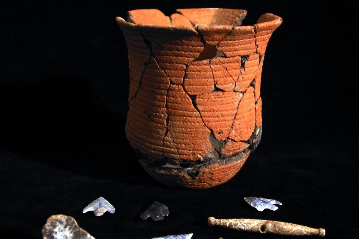Beaker pot from the grave of the Boscombe Bowmen