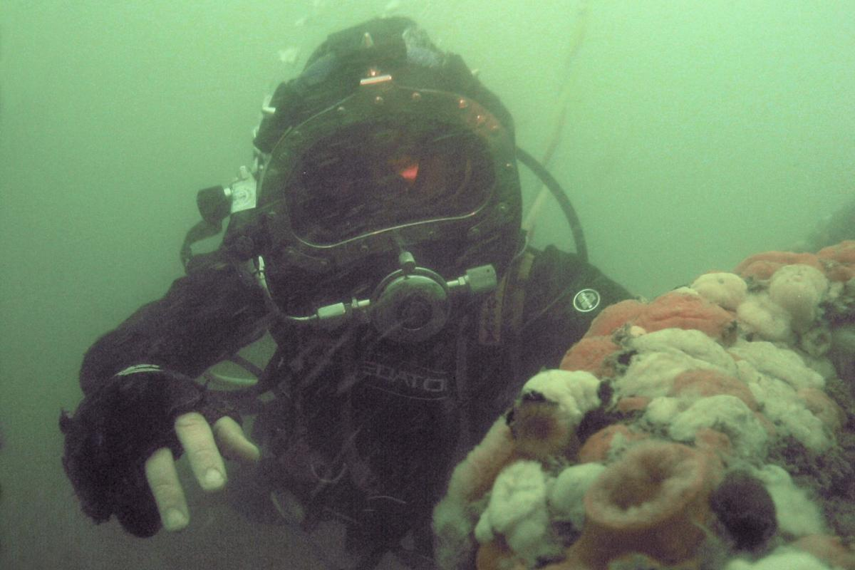 Diving on the Resurgam off the Welsh coast