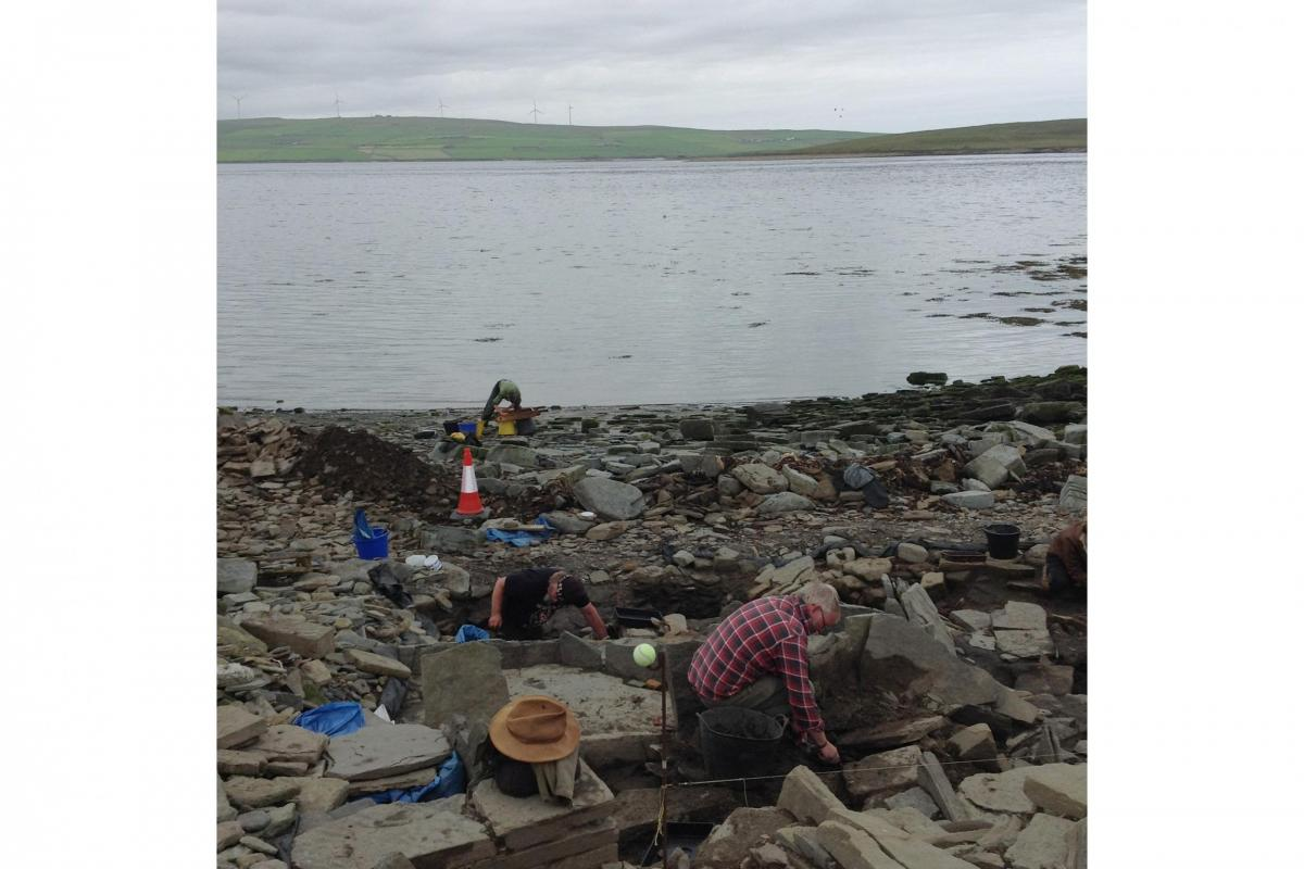 Return to Rousay II: Part 8 - seals and archaeology