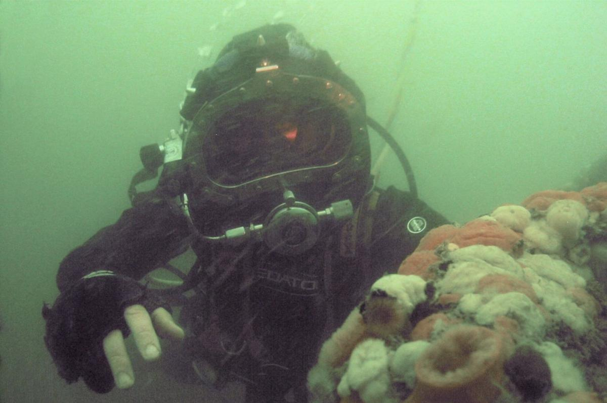 Diver on the Resurgam wreck site