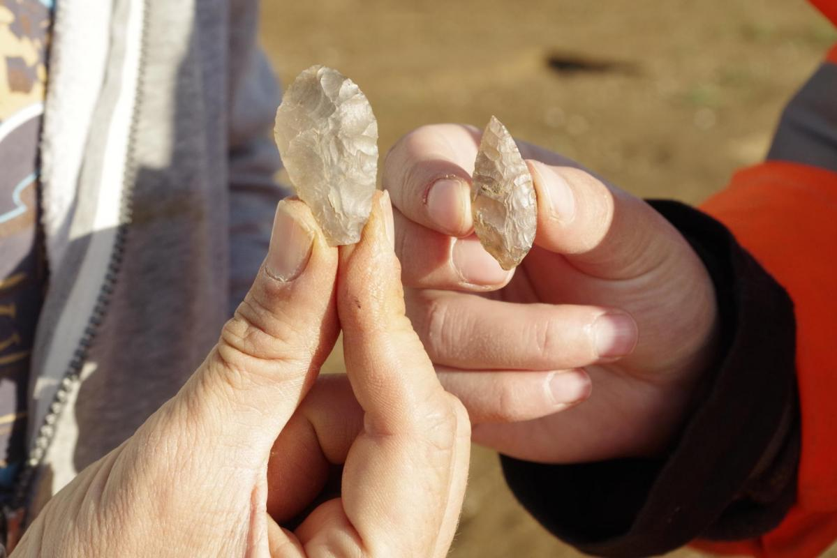 A pair of leaf shaped arrowheads from the enclosure