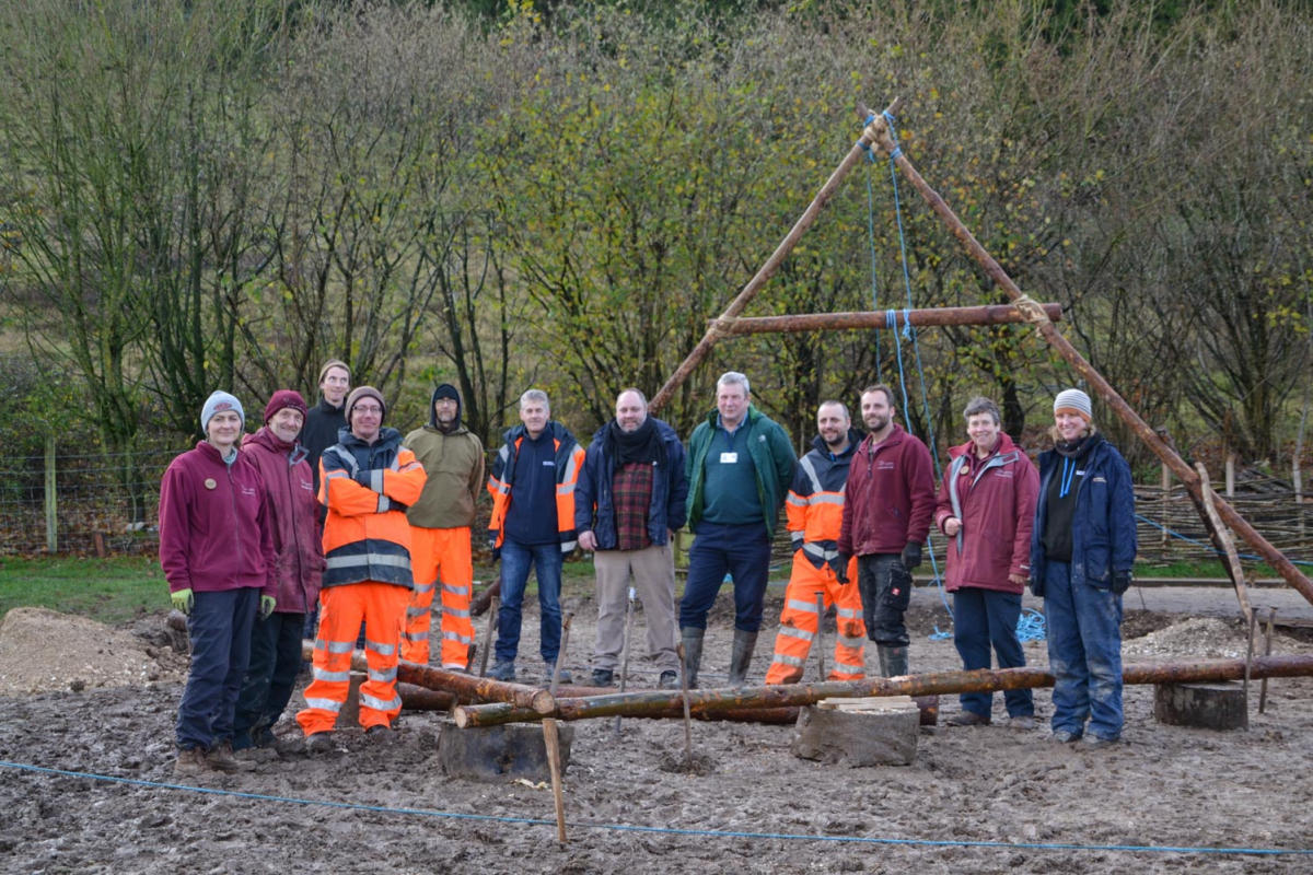 The teams at Wessex and Butser collaborate to raise the first A frame of the Neolithic house