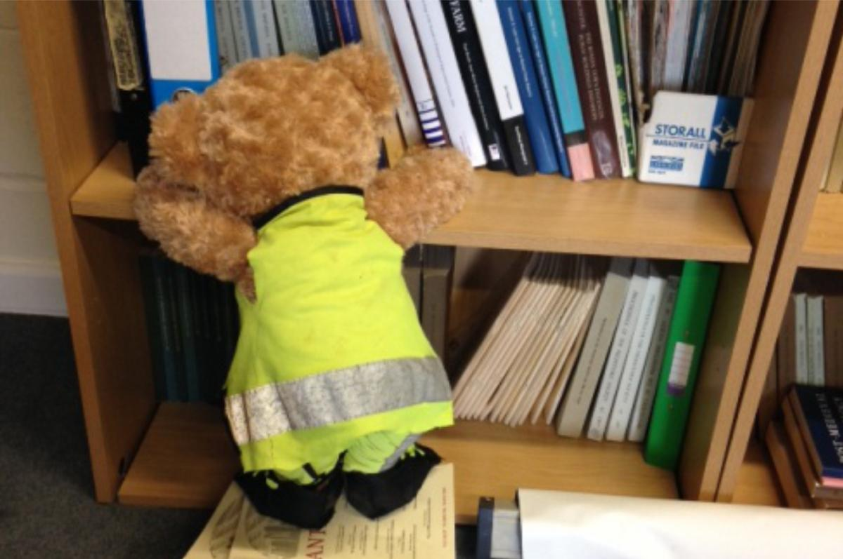 Kent Jones bear archaeologist helping the heritage team find a reference
