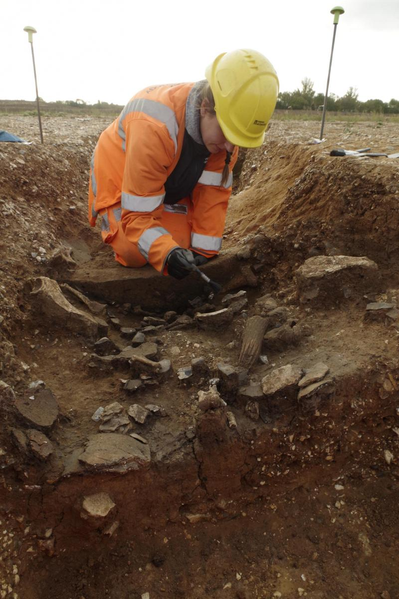 Digging a causewayed enclosure at Datchet 2018