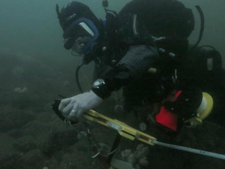 Archaeological diver recording on the Sicar Rock site, Dunbar