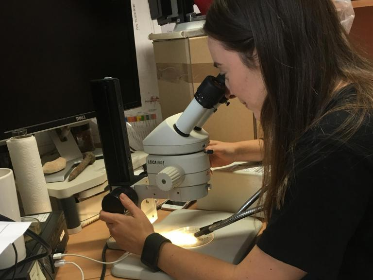 Hayley examining samples through a microscope