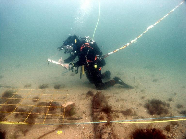 A diver on the Swash Channel wreck